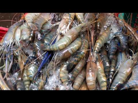 Street Food Video In Phnom Penh - Daily Food In The City - Amazing Cambodian Village Food