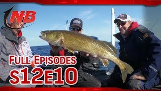 Championship Big Water Spinner Techniques for Bay De Noc Walleye (S12E10)