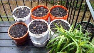 Apartment Balcony Gardening DIY IV | Spring Prep