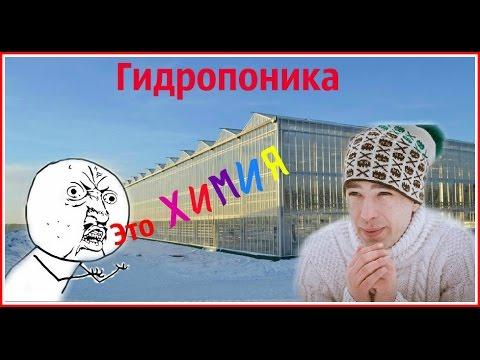 видео: Гидропоника - Это плохо или хорошо?