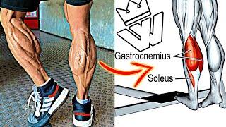 BRUTAL LEG DAY! 13 Exercises for HUGE LEGS