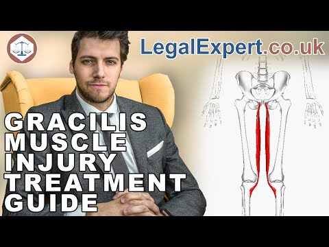 Gracilis Muscle Injury Treatment Guide ( 2019 ) UK