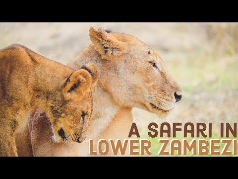 Zambia's Beautiful Lower Zambezi National Park