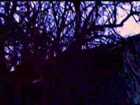 Black Sabbath - Planet Caravan