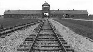 Diario di un viaggio. Ad Auschwitz per ricordare