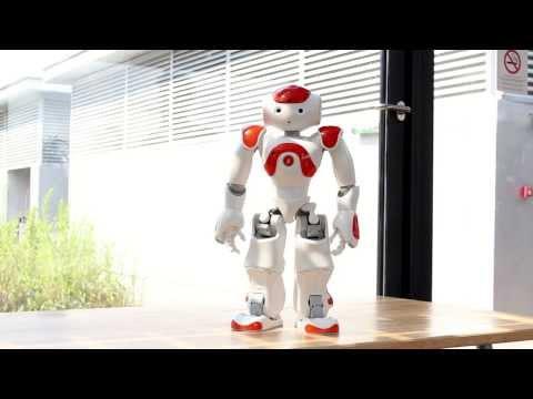 0 A Evolução da Dança por um Robô