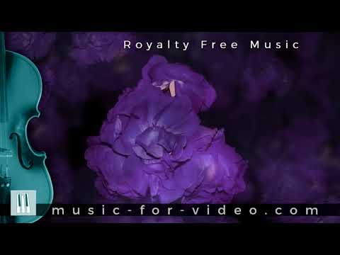 Musica Background Royalty Free