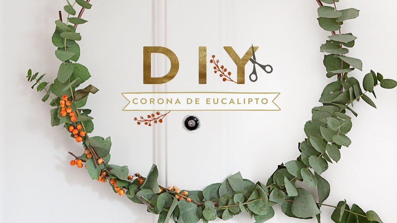C mo hacer una corona de eucalipto para la puerta for Como hacer una corona de navidad para la puerta