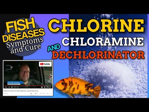 What Is Chlorine And How To Dechlorinate
