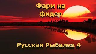 Русская рыбалка 4 Ловим на Оз. Старый Острог Эксперимент ловим рыбу и Все что ниже 500 г отпускаем