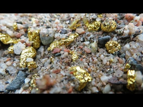 A Lot Of Gold In The Sand! People, There Is A Lot Of It, Here Under Our Feet...