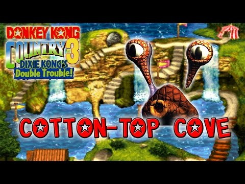 DKC3 Walkthrough 03: Cotton Top Cove