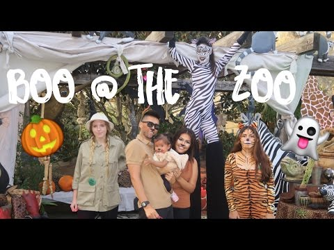 Boo at the Zoo & 1st Trick or Treat | The Mongolian Family