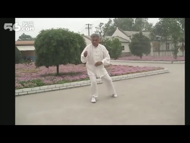 Wang Chang Jiang - Tai Chi style Chen Laojia Yilu [陈氏太极拳老架 Taijiquan style Chen]