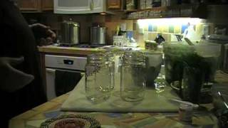 How To Make Polish Dill Pickles Part2