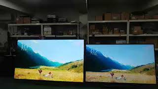 대형TV 대형티비 98인치 84인치 비교 동영상