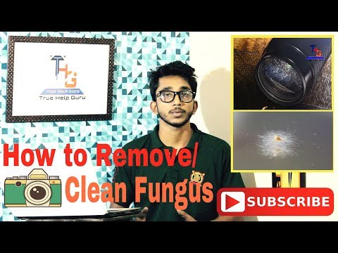 How to Remove / clean Fungus your DSLR? 5 Tips to you....