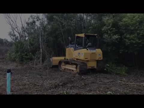 Temple Land Clearing