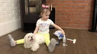 Варёночка и её любимец Мальтезе (мальтийская болонка) Френки. Что нужно для нашего питомца.