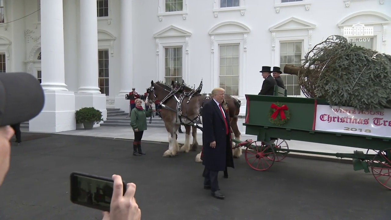 Trump White House Christmas.Christmas At The White House