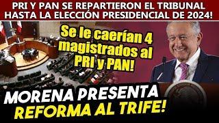 Obrador quitará al PRI y PAN control del TRIFE con reforma desde el Senado