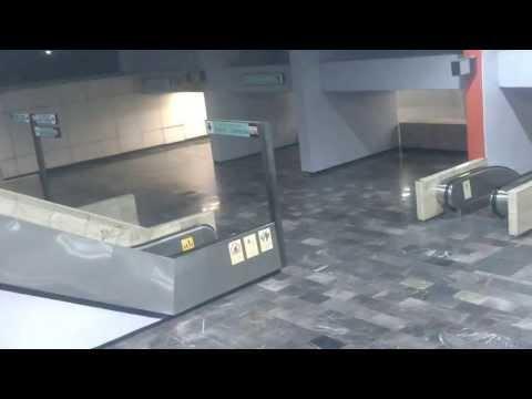 Gritos Y Una Luz Extraña En Metro Consulado