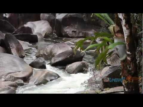 Mission Beach & Surrounds travel video guide Queensland Australia
