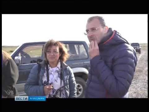 """На Чукотке планируют создать парк """"Земля кулика-лопатня"""""""