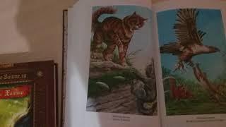 Обзор Золотой коллекции Коты Воители: Опасная Тропа и Битва за лес.
