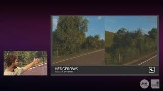 Foliage breakdown on Forza Horizon 4