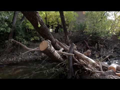 Post flood Debris - Creek path Boulder