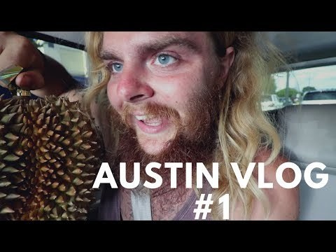 My First Day Back in Austin Tx || Vlog #144 of 365