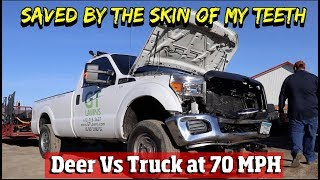 Ford Truck Saved My Life A Deer Hit Me Head On At 70 MPH How I Walked Away