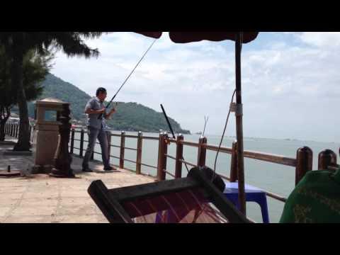 Câu cá Vũng Tàu