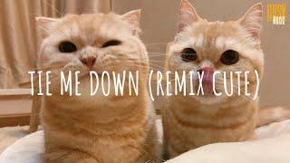 Tie Me Down (remix cute) - REVA INDO // (Vietsub + Lyric) Tik Tok Song