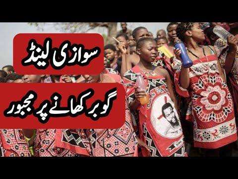 Travel To Swaziland | Swaziland History Documentary In Urdu And Hindi | سوازی لینڈ کی سیر Discoverit
