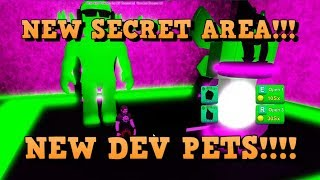 NEW SECRET AREA AND DEV PETS FOR ROBLOX GAME PEW PEW SIMULATOR