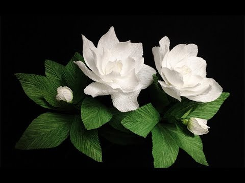 Abc Tv How To Make Gardenia Paper Flower From Crepe Paper Craft Tutorial