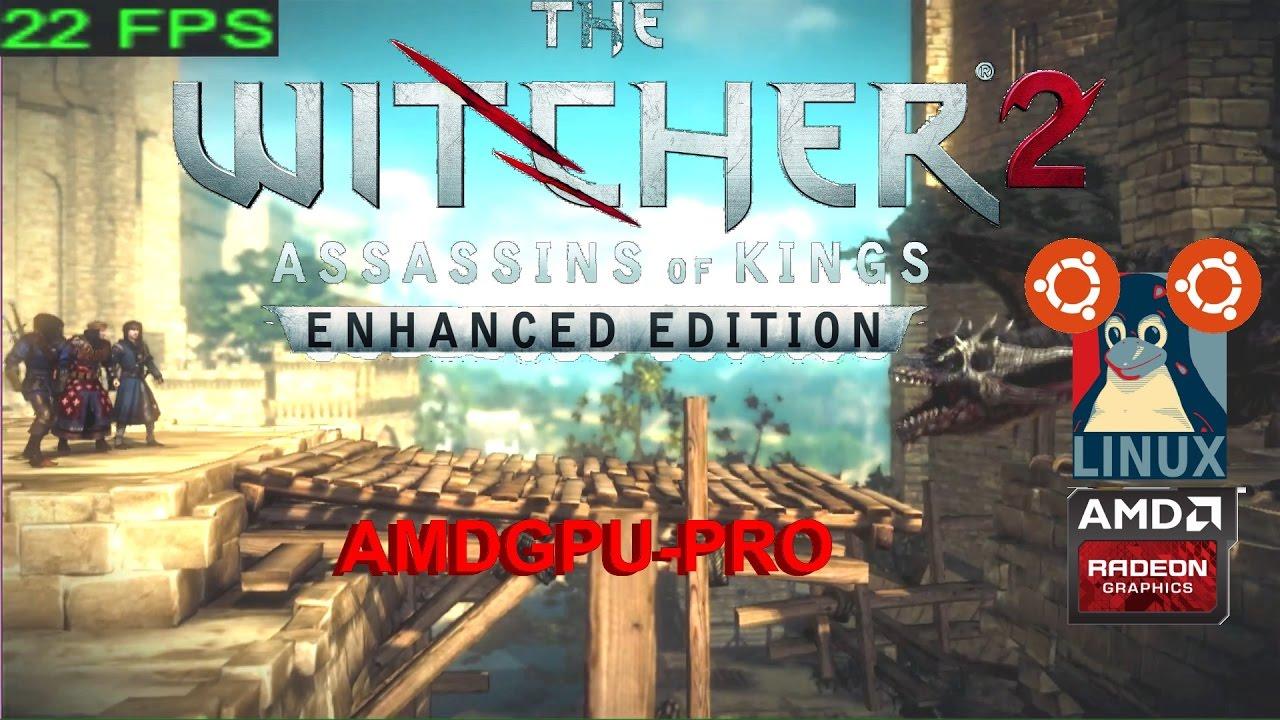 2 - AMDGPU-Pro - The Witcher 2 para Linux Ubuntu - YouTube