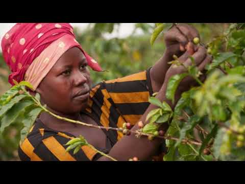 Rwanda - The Rebuilding of a Nation