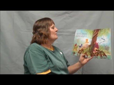 Denver Women's: Daisy Dinosaur Gets Lost