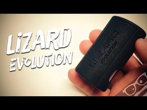 Lizard Evolution