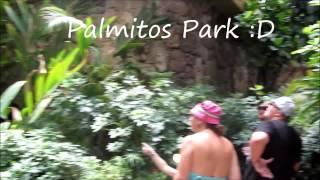 Gran Canaria Vlog |Adventures of HanLew
