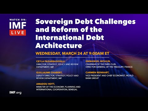 Sovereign Debt Challenges and Reform of the International Debt Architecture