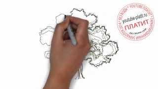 Как нарисовать старый зеленый дуб карандашом(Как нарисовать картинку поэтапно карандашом за короткий промежуток времени. Видео рассказывает о том,..., 2014-07-02T17:19:10.000Z)