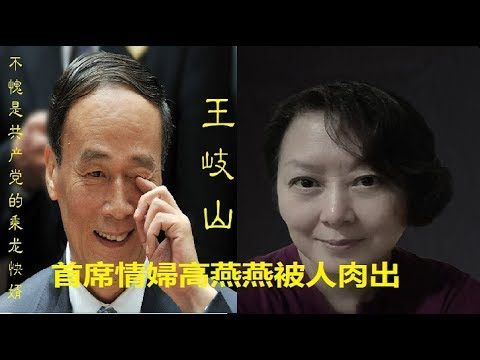 Image result for 王岐山高燕燕