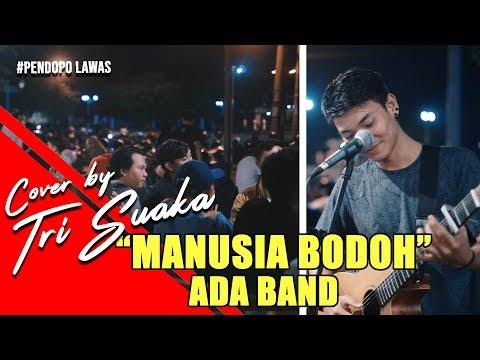 ADA BAND - MANUSIA BODOH LIRIK BY TRI SUAKA - PENDOPO LAWAS