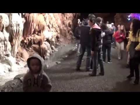 Tours4Fun to Philly, DC, Shenandoah Caverns,Princeton University