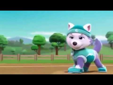 PAW PATROL Chase X Everest Tribute 1 YouTube