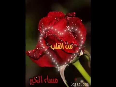 Diaa Mohamed On Twitter أجمل وردة لاطيب قلب